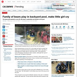 Family of bears play in backyard pool, make little girl cry - Trending