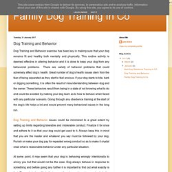 Family Dog Training In Co: Dog Training and Behavior