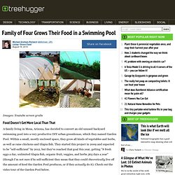 Family of Four Grows Their Food in a Swimming Pool