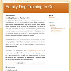 Family Dog Training In Co: Best Dog Obedience Training in CO