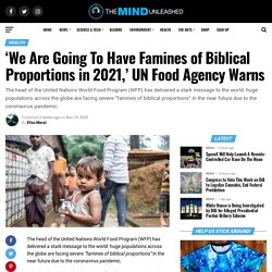 'We Are Going To Have Famines of Biblical Proportions in 2021,' UN Food Agency Warns