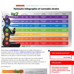 Fantastic infographic of cannabis strains / Boing Boing