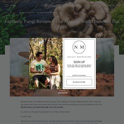 Fantastic Fungi Review – Watch a Film About the Mycelium