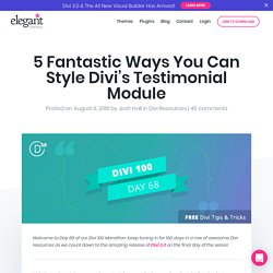 5 Fantastic Ways You Can Style Divi's Testimonial Module