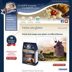 Farine tout usage sans gluten - Boulangerie L'Angélique