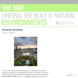 Farm the Rooftops – The Dirt
