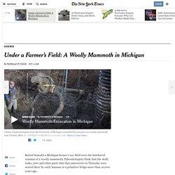 Under a Farmer's Field: A Woolly Mammoth in Michigan