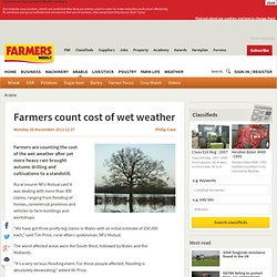 Farmers count cost of wet weather - 11/26