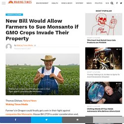 New Bill Would Allow Farmers to Sue Monsanto if GMO Crops Invade Their Property - Waking Times Media