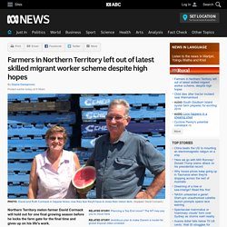 Farmers in Northern Territory left out of latest skilled migrant worker scheme despite high hopes