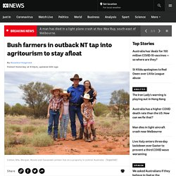 Bush farmers in outback NT tap into agritourism to stay afloat