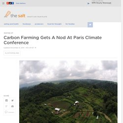 Carbon Farming Gets A Nod At Paris Climate Conference
