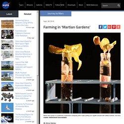 Farming in 'Martian Gardens'
