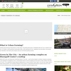Urban Farming in Israel - LivinGreen