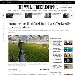 Farming Gets High Tech in Bid to Offer Locally Grown Produce