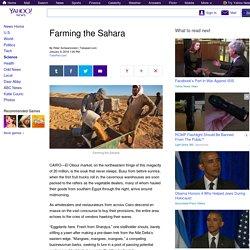 Farming the Sahara
