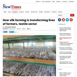 How silk farming is transforming lives of farmers, textile sector