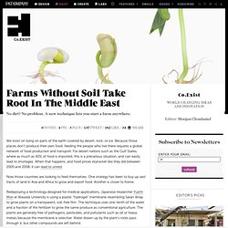 Farms Without Soil Take Root In The Middle East