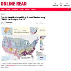 Fascinating Illustrated Map Shows The Ancestry Of EVERY County In The US