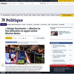 « Salope fascisante » : Marine Le Pen déboutée en appel contre Nicolas Bedos
