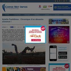 CORSE NET 25/10/14 Xylella fastidiosa : chronique d'un désastre annoncé !