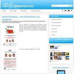 VILLE DE GHISONACCIA - Xylella Fastidiosa : Avis d'information aux voyageurs.