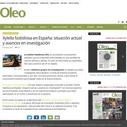 OLEOREVISTA 08/10/20 Xylella fastidiosa en España: situación actual y avances en investigación