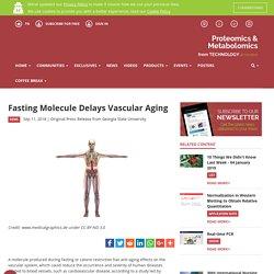 Fasting Molecule Delays Vascular Aging