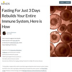 Fasting For Just 3 Days Rebuilds Your Entire Immune System, Here is How