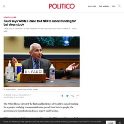 """politico_com 23/06/20 Fauci says White House told NIH to cancel funding for bat virus study - """"Why was it canceled? It was canceled because the NIH was told to cancel it,"""" Fauci said"""