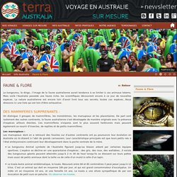 faune et flore en Australie