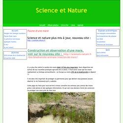 Faune d'une mare - Science et Nature