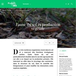 Faune du sol et production végétale (Planet-Vie - ENS)