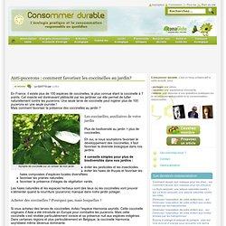 Anti-pucerons : comment favoriser les coccinelles au jardin