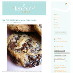 Chocolate Chip Cookie « A Tender Crumb