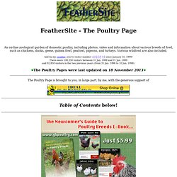 The Poultry Page