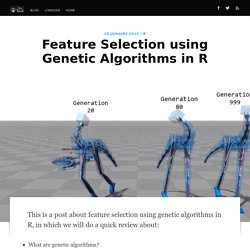 Feature Selection using Genetic Algorithms in R