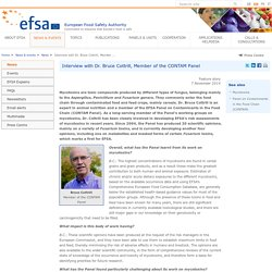 EFSA 07/11/14 Interview with Dr. Bruce Cottrill, Member of the CONTAM Panel (mycotoxines)