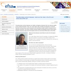 EFSA Features: Transboundary animal diseases: what are the risks in the EU and what does EFSA do?
