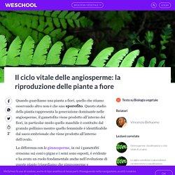 Fecondazione con fiori e polline: riproduzione delle piante angiosperme