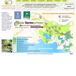Bienvenue à la Fédération des Caves Coopératives des Bouches-du-Rhône