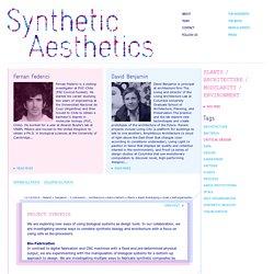 Federici + Benjamin - Synthetic Aesthetics