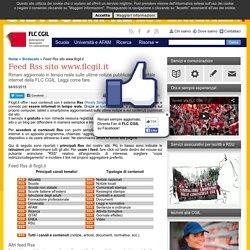 Feed Rss sito www.flcgil.it