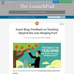 Guest Blog: Feedback on Teaching—Beyond the Low-Hanging Fruit