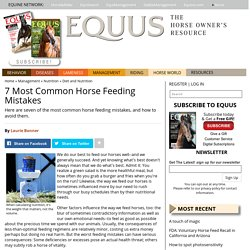 7 Most Common Horse Feeding Mistakes