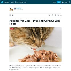 Pros and Cons Of Wet Food