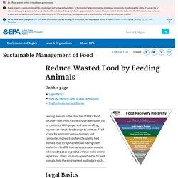 Reduce Wasted Food by Feeding Animals