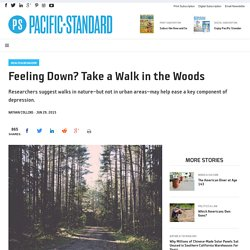 Feeling Down? Take a Walk in the Woods