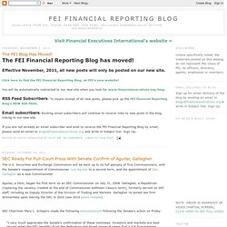 FEI Financial Reporting Blog