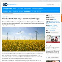 Feldheim: Germany′s renewable village